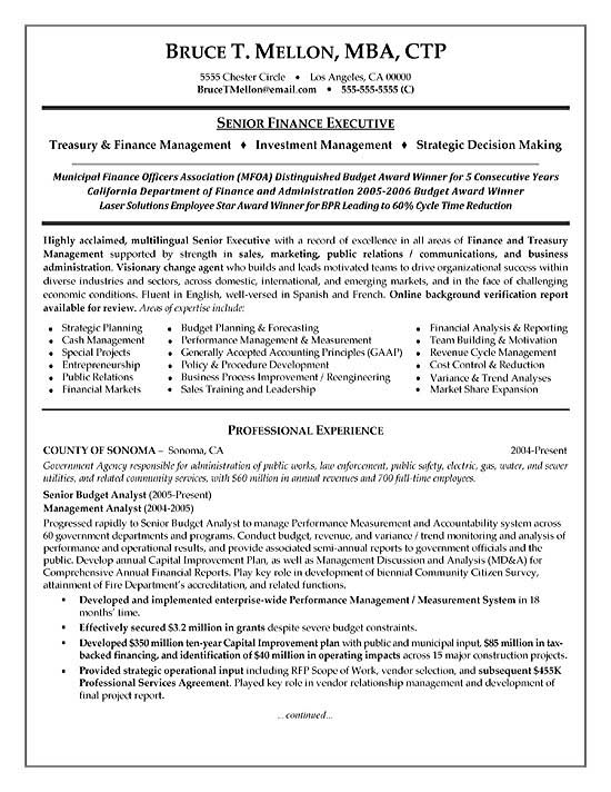 Financial manager resume example altavistaventures Gallery