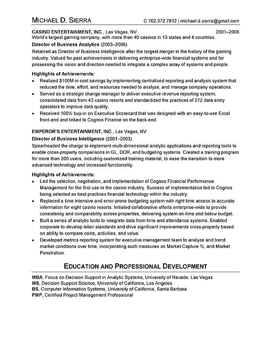 CIO Resume Example