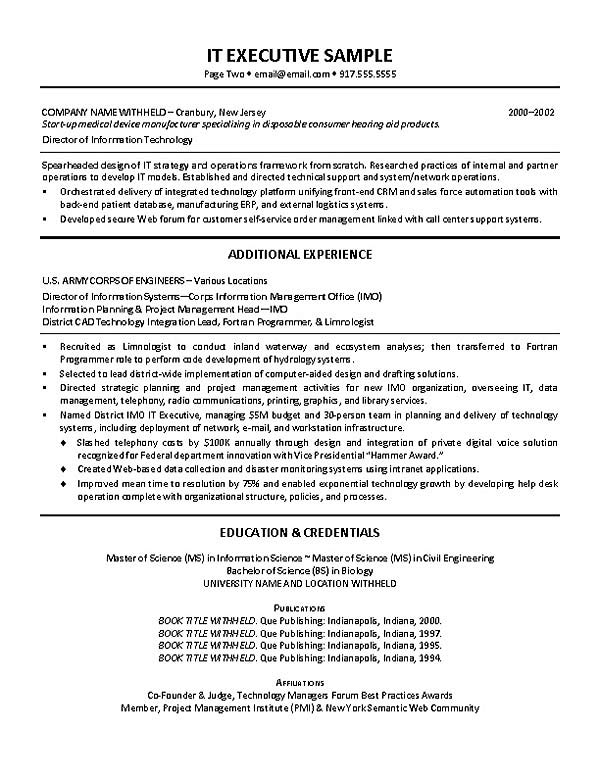 technical it director resume example