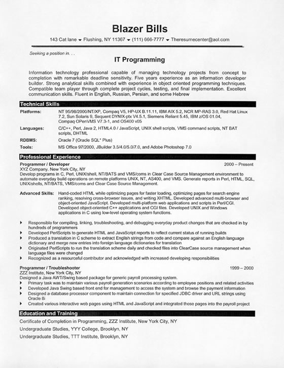 computer programmer resume example