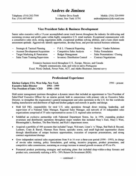 Business Development Resume Example