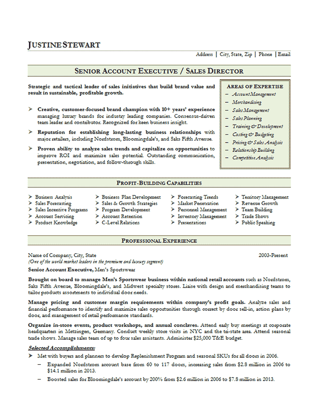 Sales Account Executive Resume