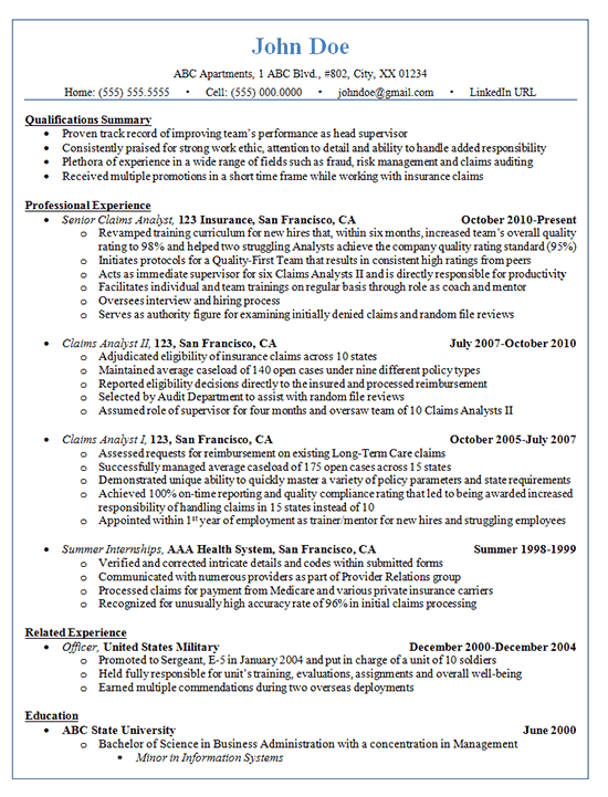 It Professional Resume Profile Examples