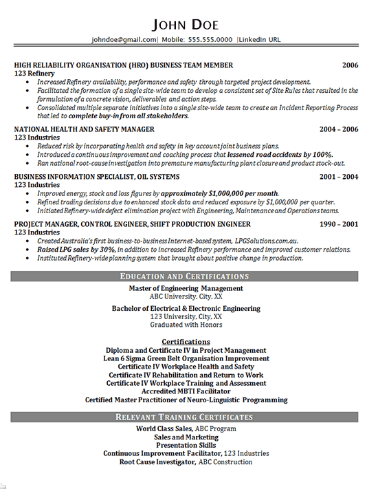 Executive Project Consultant Resume Example  Business Manager